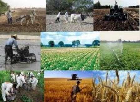 21طرح تحقیقاتی کشاورزی کهگیلویه و بویراحمد در دست اجراست