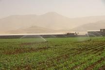 رشد 11 برابری اشتغال هدیه انقلاب به کشاورزی کهگیلویه و بویراحمد