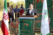 دومین جشنواره پسته در باغستان سنتی قزوین برگزار شد