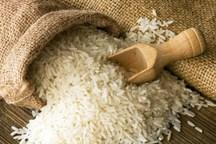 توزیع سومین محموله برنج خارجی در استان مرکزی آغاز شد