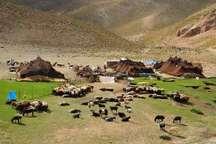 سه درصد جمعیت عشایری کشور در استان ایلام ساکن هستند