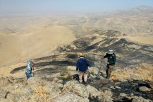 15 هکتار از اراضی ملی در آتانک طعمه حریق شد