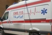 6 دستگاه آمبولانس به ناوگان اورژانس 115 بوشهر پیوست