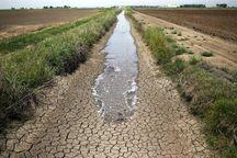 ظرفیت آبهای نامتعارف در استان بوشهر مغفول ماندهاست