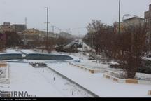 برف و کولاک در اردبیل شدت یافت