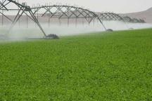 اجرای سامانه نوین آبیاری در 750 هکتار زمین کشاورزی چالدران