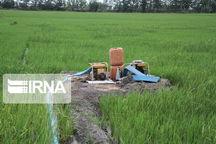 بیش از ۳۸۰۰ میلیارد ریال در بخش کشاورزی شیروان تصویب شد