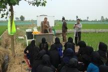 200 بسیجی در طرح بسیج همگام با کشاورز خوزستان آموزش دیدند