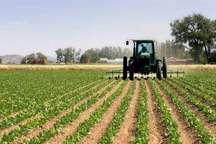 اجرای 109 طرح تحقیقاتی کشاورزی و دامی در کردستان