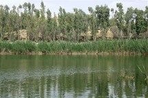 حوزه شکار صید ممنوع تالابهای پلدختر به منطقه حفاظتشده تبدیل شود