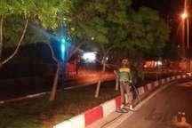عملیات سمپاشی بهاره درختان تبریز آغاز شد