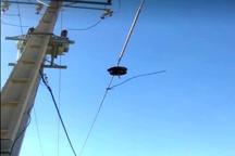 ورود خسارات زیاد به شبکه های برق ایذه به دلیل وزش شدید باد