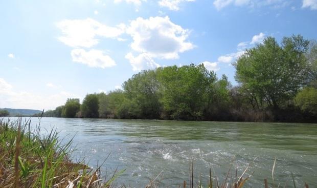 185 میلیون متر مکعب روان آب وارد رودخانههای بوشهر شد