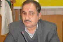 همدان سهم بسزایی در مدال آوری های بین المللی دارد