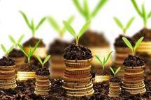 مجموع سرمایه گذاری در بخش کشاورزی آذربایجان غربی کمتر از ۵ درصد بوده است