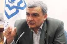 مدیر عامل بیمه سلامت ایرانیان: طرح تحول سلامت منشاء خدمات متعددی در کشور شد
