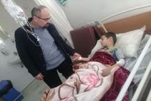 حمله سگ های ولگرد یک کودک را در خلخال راهی بیمارستان کرد
