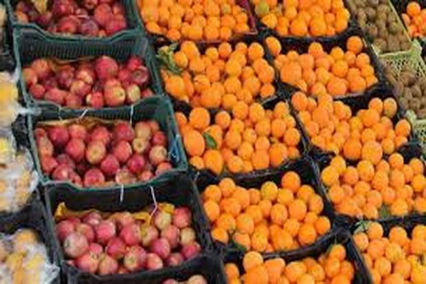 توزیع میوه های نوروزی درمازندران شروع شد