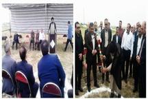 موافقت دانشگاه علوم پزشکی قزوین با الحاقیه بیمارستان شهدای آبیک  بهرهمندی مردم از آب طالقان تا پاییز