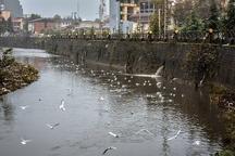 رودخانه های رشت باید به جاذبه گردشگری تبدیل شوند