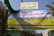 برگزاری جشن شکرانه برداشت برنج در دزفول