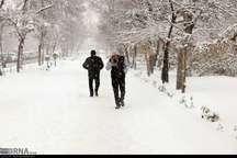 اردبیل زیر برف سنگین