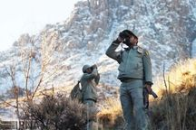دستگیری سه شکارچی متخلف در شیروان