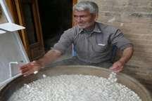 پیشنهاد بایگ تربت حیدریه به عنوان شهر ملی صنایع دستی ابریشم