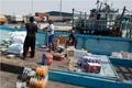 تخلیه بار شناورهای سفاری در استان بوشهر به روال عادی گذشته بازگشت