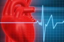 بیماریهای قلبی و عروقی بیشترین علت مرگ زنجانی ها گزارش شد