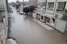 بارش باران در قصرشیرین تاکنون مشکلی ایجاد نکرده است