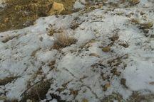 برف راه ارتباطی 20 روستای الیگودرز را مسدود کرد