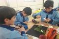 کودکان خوزستانی در مسابقات بلغارستان خوش درخشیدند