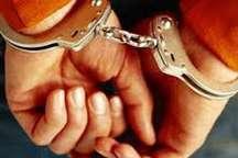 سارق حرفه ای با 13 فقره سرقت در آمل دستگیر شد