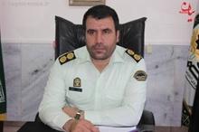 گرگ گرسنه 5 کشاورز گلشهری را مجروح کرد