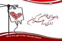 اهدای خون مستمر در قم رشد چهار درصدی داشته است