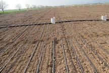 70هکتار زمین پایین دست قنات نیکشهر به آبیاری کم فشارمجهزشد