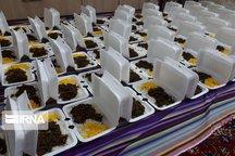 ۱۲ هزار پرس غذای گرم بین مددجویان کمیته امداد توزیع شد