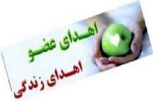3 عضو بیمار بوشهری به نیازمندان اهدا شد