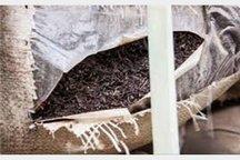 کشف بیش از 700 کیلوگرم چای قاچاق در اردستان
