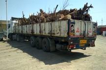 توقیف یک محموله چوب قاچاق در قزوین