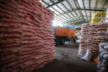 توزیع 50 تن برنج احتکاری در بجنورد آغاز شد