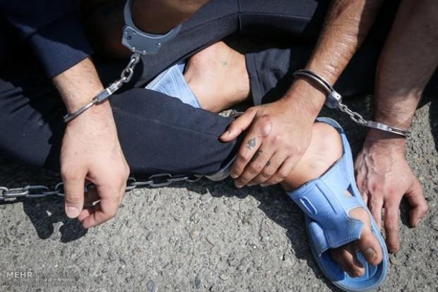 2 سارق با 41 فقره سرقت دستگیر شدند