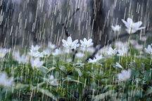73.8 میلیمتر بارش در جم ثبت شد