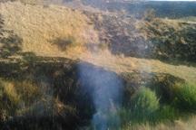 25 هکتار از مراتع تکاب در آتش سوخت