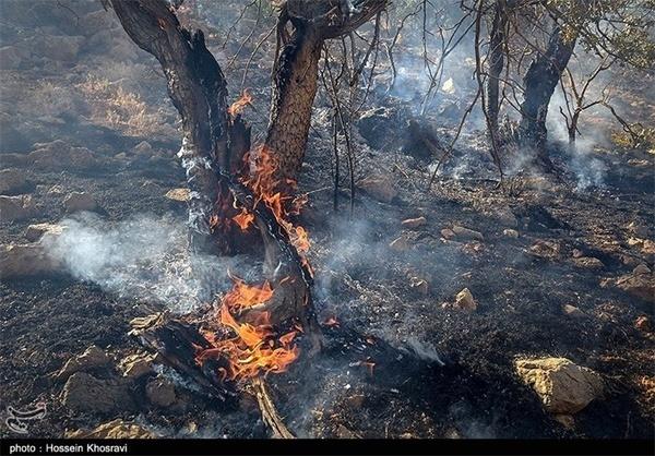 آتشسوزی در باغهای محلات برای پنجمین بار در سال جاری  نابودی یک هکتار باغ در آتشسوزی