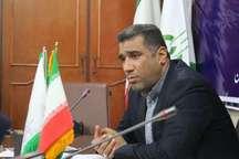آغاز برداشت و خرید تضمینی دانه روغنی آفتابگردان در خوزستان