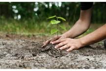 تبلور مسئولیت اجتماعی مس سرچشمه در حفاظت از محیط زیست