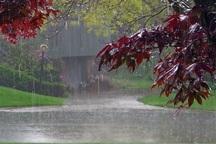 بارش باران خراسان جنوبی را فرا می گیرد