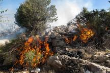 آتش درکوهگل دهدز پس از 7 ساعت مهار شد